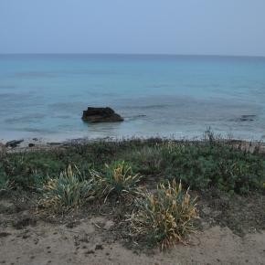 Paysage de Formentera